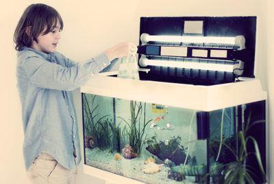 аквариум для ребенка