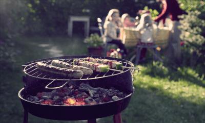 идеальный пикник с шашлыком