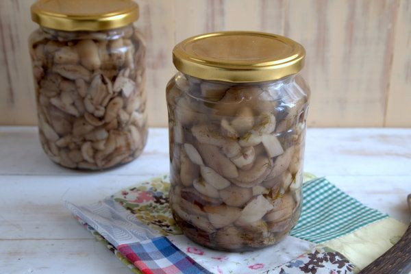 маринованные маслята самый вкусный рецепт без стерилизации