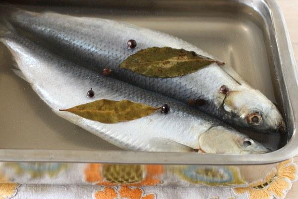 Домашняя засолка рыбы в рассоле - как правильно солить рыбу в 80