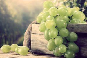 Виноградная диета – меню, отзывы, результаты, советы