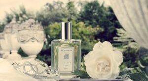 Духи с ароматом жасмина для женщин